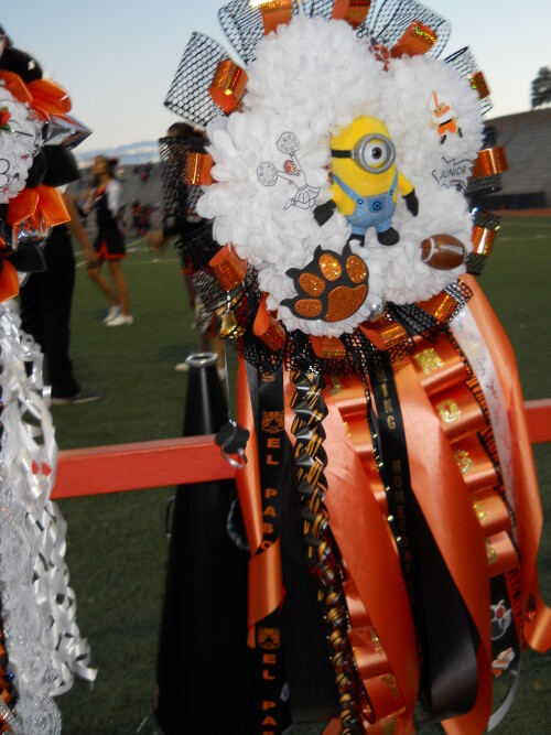 Mums 2014 El Paso High School Homecoming Digie